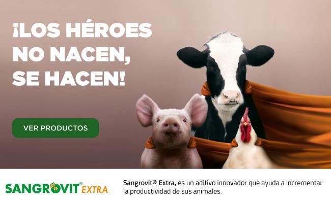 Sangrovit Extra, es un aditivo innovador que ayuda a incrementar la productividad de sus animales.