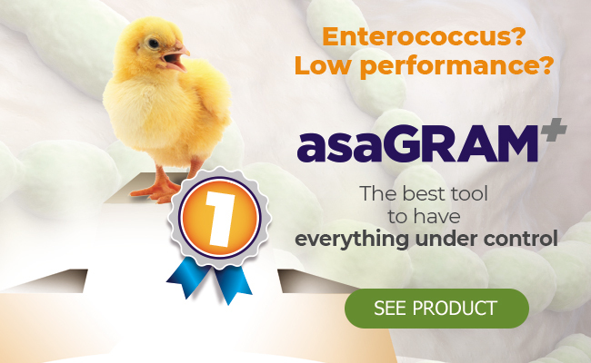 ASAGRAM, the best tool to have everything under control.